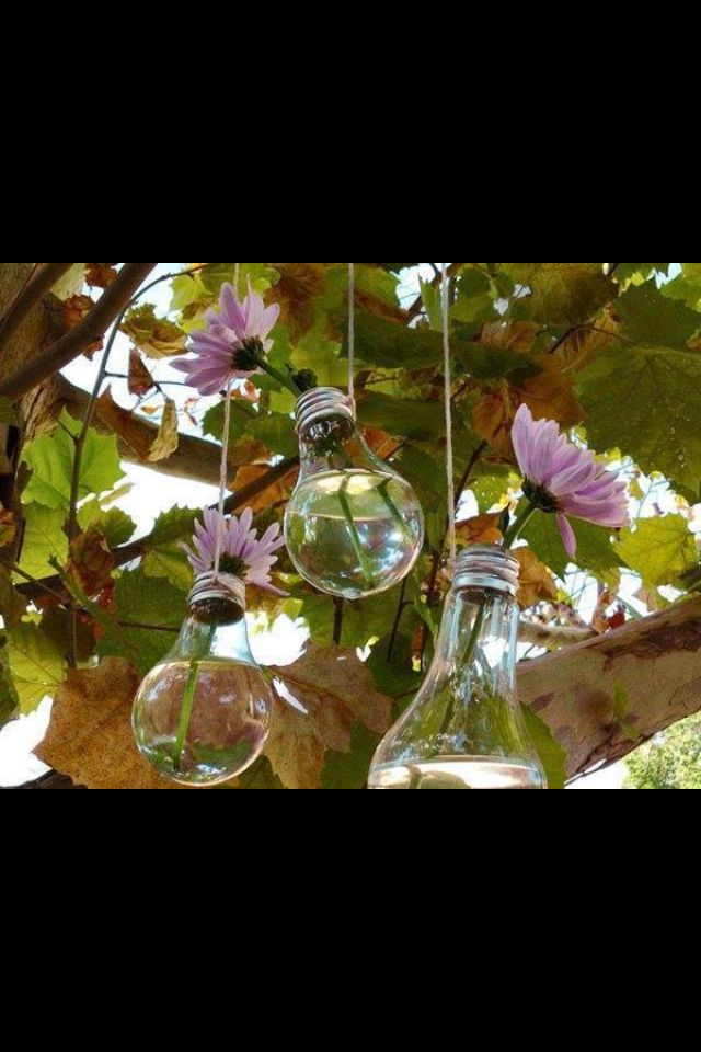 Flower holder made out of an old light bulb