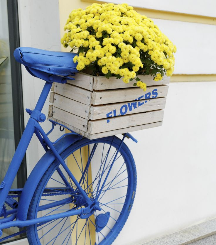 Best 25 bicycle makeover ideas on pinterest bike for for Bicycle painting near me