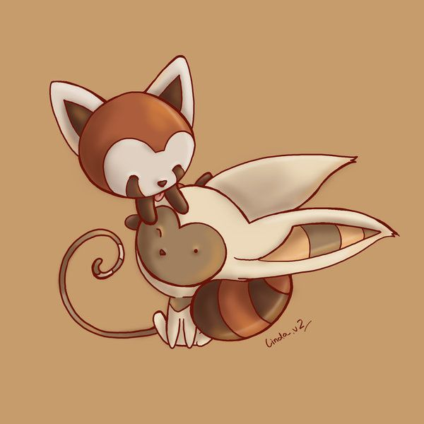 momo and pabu would be good friends :)