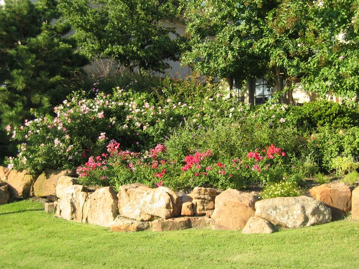 texas landscape ideas - Google Search