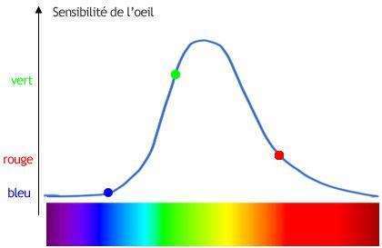 sensibilité œil spectre visible