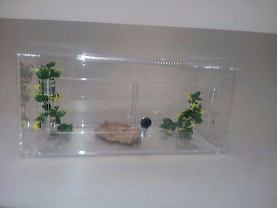 how to build a snake terrarium