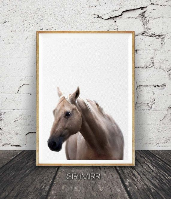 Horse Photo Print, Horse Photography, Horse Decor, Horse Poster Art, Modern Horse Print, Woodland Nursery, Modern Minimal Decor, Nursery Art
