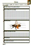 #Biene #Schularbeit #Klassenarbeit #Lernzielkontrolle Unterrichtsmaterial für den #Biologieunterricht.  Verschiedene Fragen zu dem Thema: Biene •Aussehen •Bienenstaat •Königin •Drohne •Arbeiterin •Berufe •Bienenstock •Drohnenschlacht •Hochzeitsflug •Waben •Pollenkamm •Tracht •Geruchswahrnehmung •Rundtanz •Bienenallergie •Bienensterben •Honigverarbeitung •Imker •Lückentext •73 Fragen •1 x Lernzielkontrolle •Ausführliche Lösungen •21 Seiten