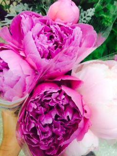 Peonies Styled Flowers By JWS Interiors Design Blog Jws