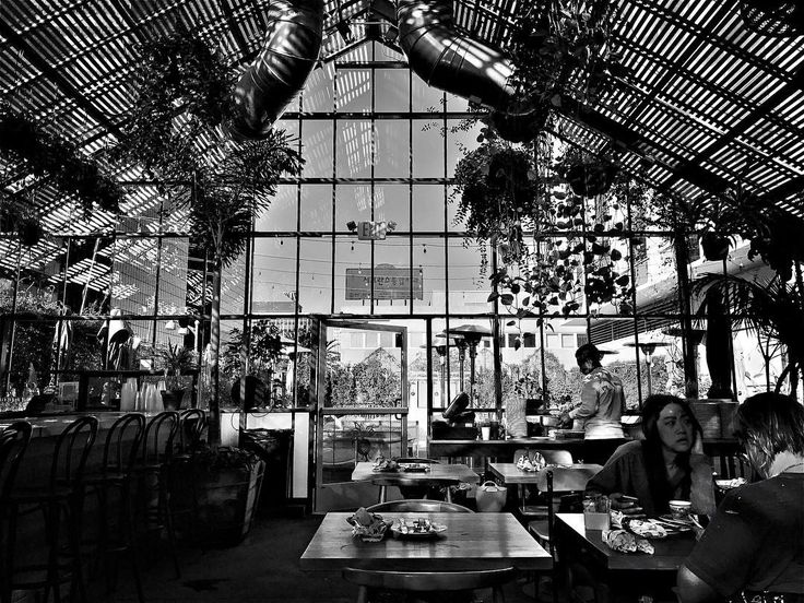 Great #breakfast in #LA before the #Oscars – loved the #hotel ! #palmtrees #losangeles #hollywood #fashion #style #agency #agents #modelagency #models #modeling #talent #model #booker #bandw #bw #mono #bnw #monochromatic #blackandwhite #blackwhite...