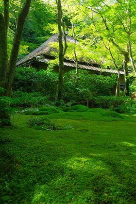 京都・嵐山嵯峨野で心深くなる「ひとり旅」のおもてなし