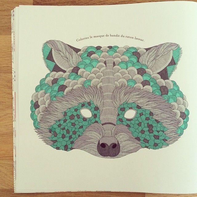 Animal Kingdom Coloring Book Raccoon