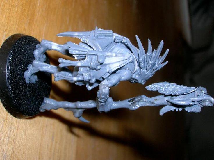 Kroot Samurai Images - Reverse Search