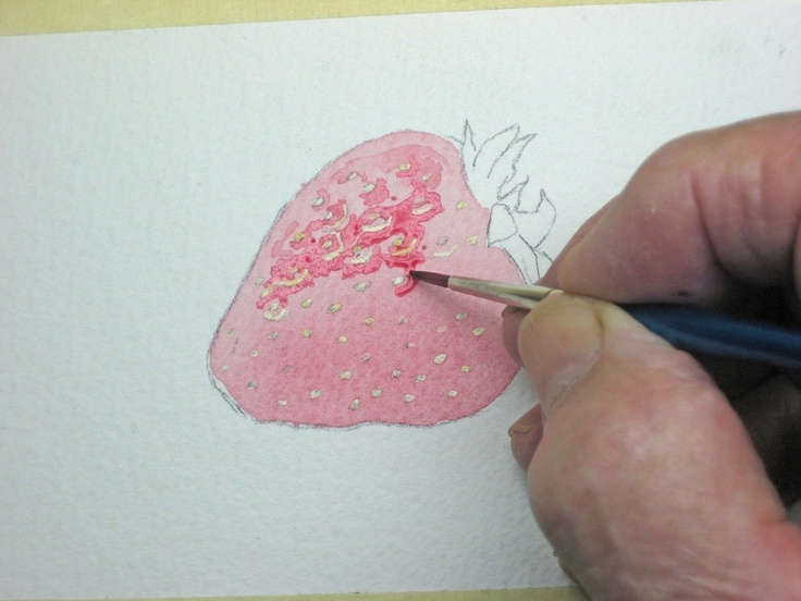How to paint strawberries in watercolor, free online tutorial.