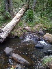 Cedar Creek near Samford QLD Australia