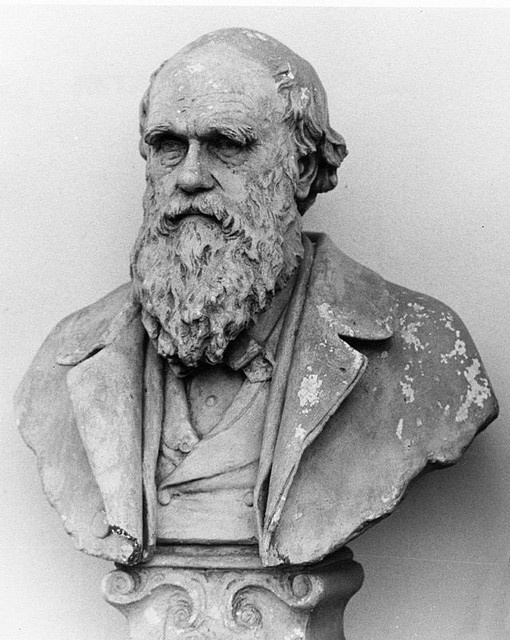 charles robert darwin and his revolutionary ideas Charles robert darwin was fifth of six children born to robert darwin and susannah darwin his father was a doctor and financier by profession since he was born in an affluent family, it gave him an access to explore nature, which he grew a fantasy for.