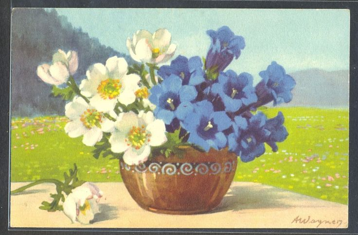 PA060 a/s WAGNER MOUNTAINS FLOWERS HELLEBORES & BLUE FOWERS Fine LITHO