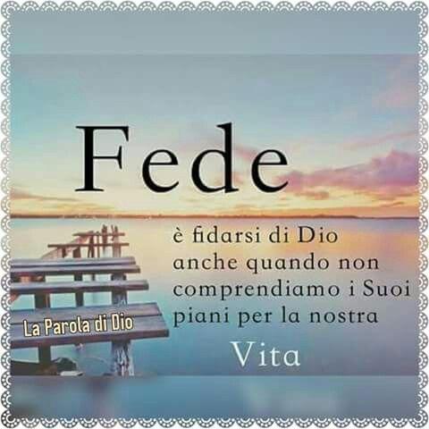Aver Fede...