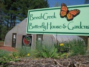 beech creek girls Beech creek apartments at 100 beech creek ln, selma, al 36703.