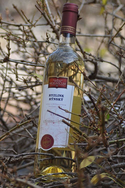 Bílé víno - Ryzlink rýnský Pozdní sběr - Vinum Moravicum a.s.