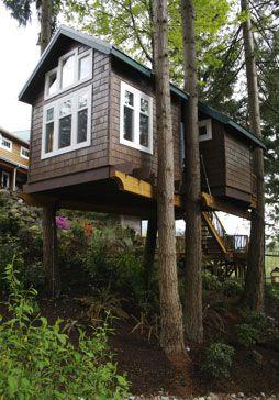 TreeHouse Workshop
