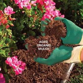 64 best images about Mulch & Landscaping Tips on Pinterest ...