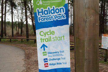 Haldon Forest Mountain Bike Trail Centre