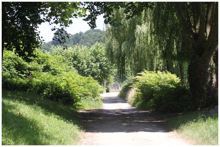 Petite promenade