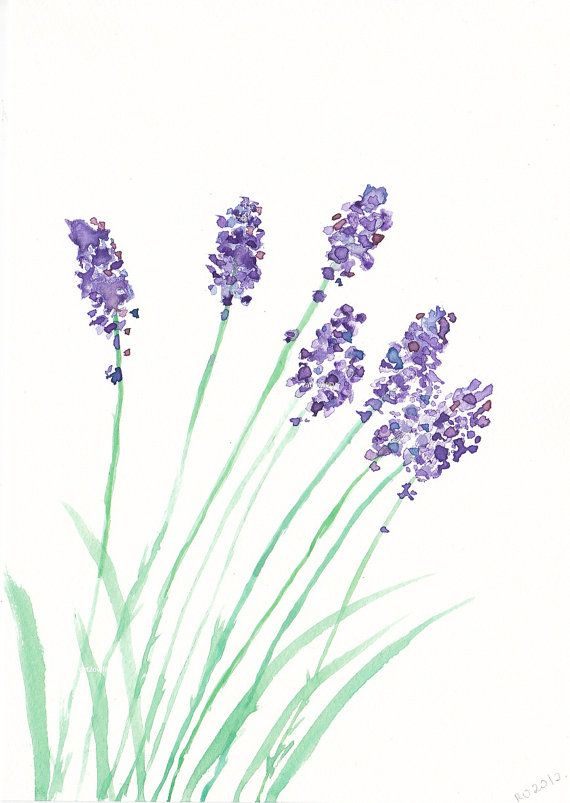 I Love The Idea Of Herbs And Flowers For Nursery SALE Lovely Lavender Watercolor Painting Print By Littlecatdraw