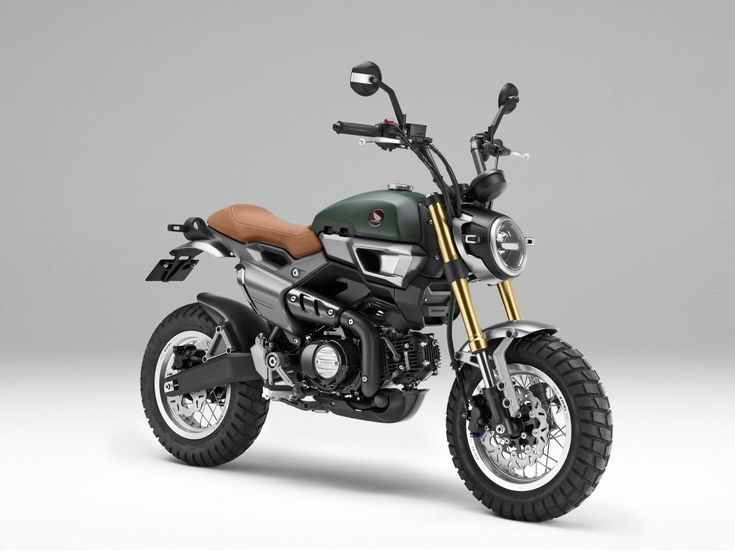 Revealed: Honda MSX125 Scrambler concepts - Bike World