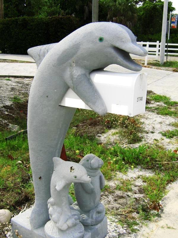 Dolphin mailbox ~~~
