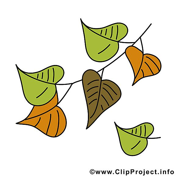 Chute Des Feuilles Clipart Gratuit Automne Images Clip Art Clipart Chute Des Feuilles