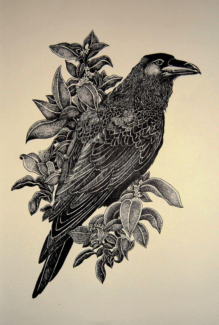 Resultado de imagen de raven drawing