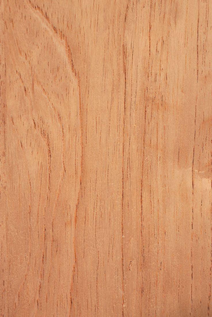 Qld Cedar