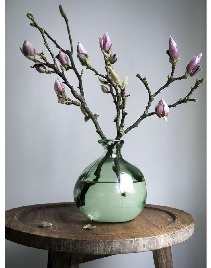 Altijd lente in huis met deze bloemen