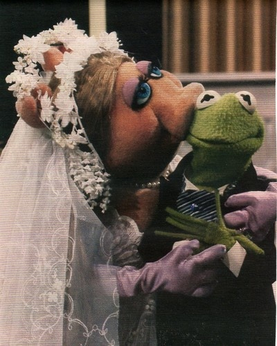 158 Best Images About Kermit Miss Piggy On Pinterest: 17 Best Images About Kermit The Frog N Miss Piggy On