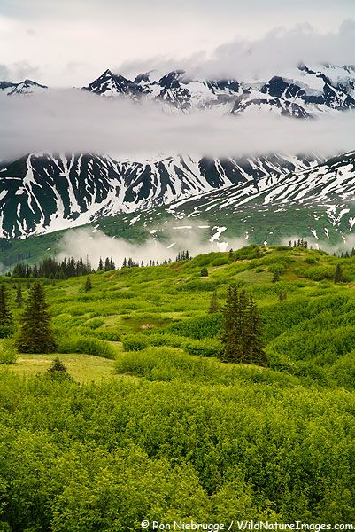 Tatshenshini-Alsek Wilderness Provincial Park - British Columbia, Canada
