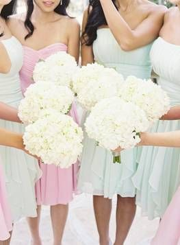 White Hydrangea is very popular and can be found cropping up in bouquets and arrangements of wedding flowers. Pictured above are beautiful white Hydrangea bridesmaid hand-tied bouquets.: Pastel Bridesmaid, Hydrangeas Bouquets, Pastel Dresses, Bridesmaid Dresses, White Bouquets, The Dresses, Bridesmaid Bouquets, Flower, White Hydrangeas