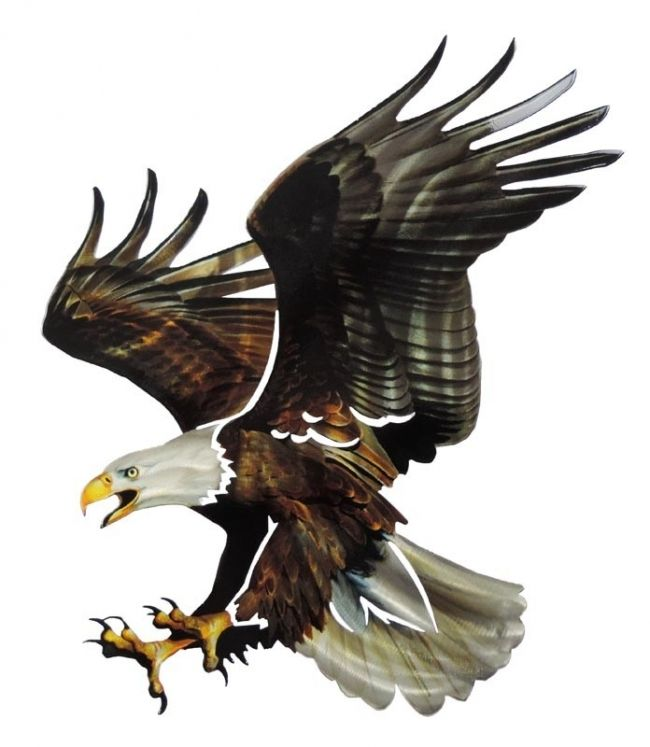 Bald Eagle 3D Steel Reflective Wall Art