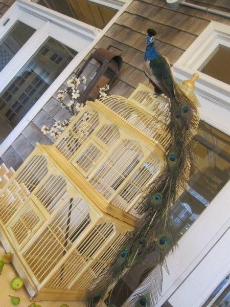 Bird house: Birdhouses Blue, Birds Birdhouses, Birdi Houses, Birds Houses, Bird Houses, Birdhouses Birds Cages