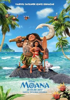 The social news: MOANA