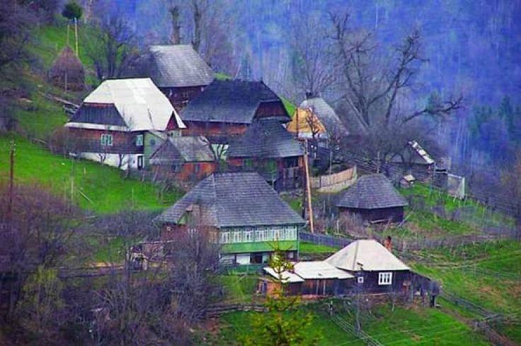 Satul autentic românesc, reînviat de străini http://www.antenasatelor.ro/satul-%C8%99i-lumea/8584-satul-autentic-romanesc,-reinviat-de-straini.html