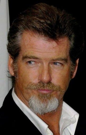 3 Moustaches For Your Goatee Look Mens Fashion 2018 Pinterest