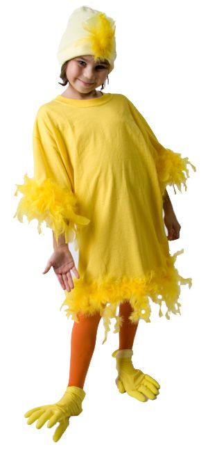 Chicken Costume - maybe make it with white