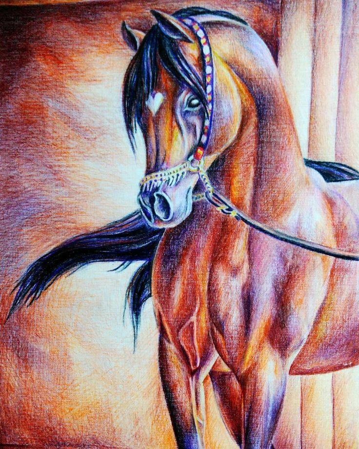 My horse by color pen ~ ©2015  #afalina #아팔리나 #drawing #night #sketch #work #paint #pen #anime #manga #밤 #화가 #화이트 #그림 #데생 #스케치 #사랑 #색깔 #연필 #heir #draw_time #검정색 #music #말 #horse