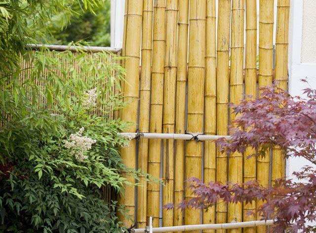 Construire un brise-vue en cannes de bambou avec les conseils de Rustica.