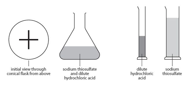 an experiment on the effect of concentration to the rate of reaction In this classic experiment, from the royal society of chemistry, students carry out experiments to measure the effect of changing the concentration on the reaction between sodium thiosulphate and hydrochloric acid the resource is set out as teachers' notes followed by the students' page which.