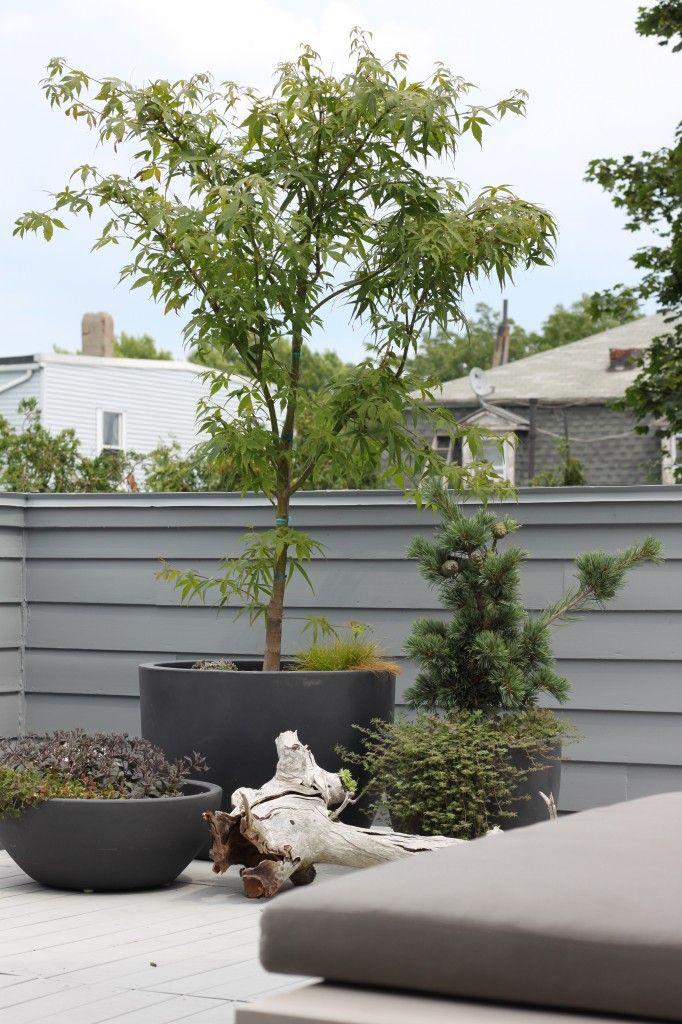 Best 25 Black Planters Ideas On Pinterest Tall Planters