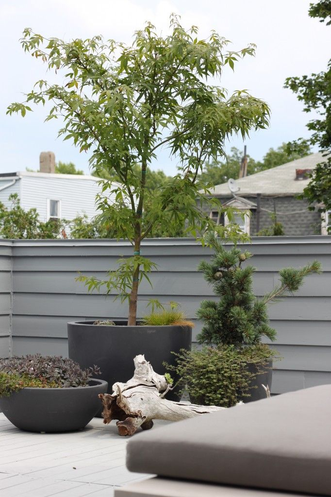 Roof Deck Planters General Roofing Systems Canada Grs