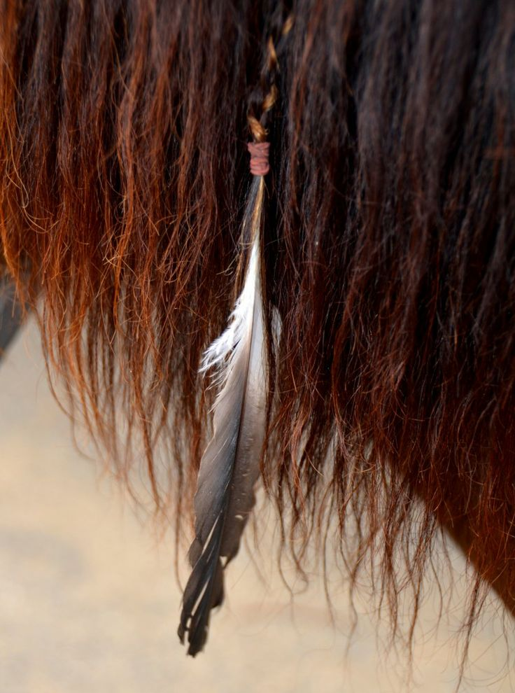 Weave a feather into a horses mane for a natural look! || horse mane ideas