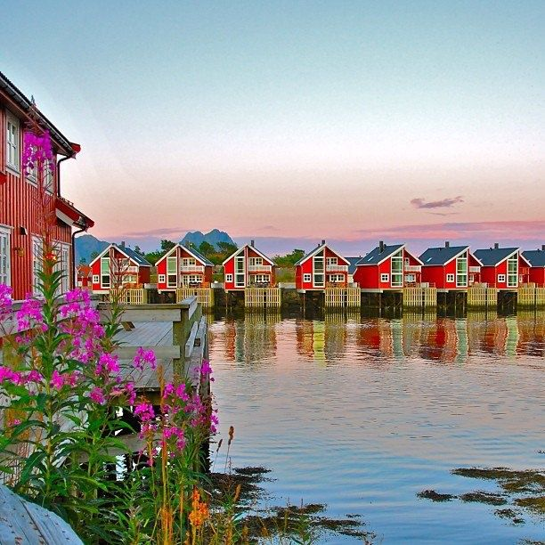 Magical Places To Stay In Europe: 2446 Best Images About ϸ� Norway ϸ� On Pinterest