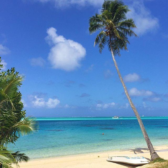 📸: If anyone needs us, you'll find us at our secluded paradise 🏝⛱  www.thegirlswhowander.com  #thegirlswhowander #borabora #tahiti #frenchpolynesia #palmtree #beach  #photography #travel #instatravel #nofilter