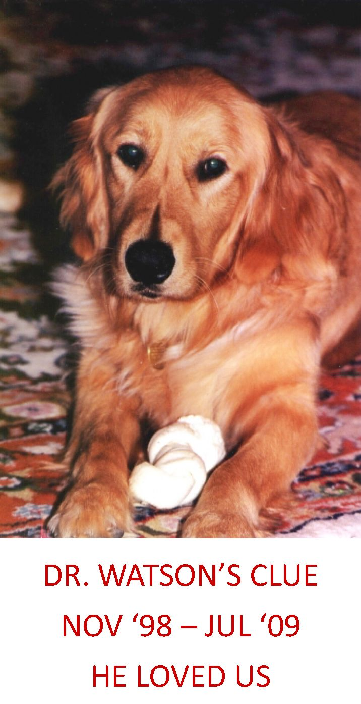 HONOREE: Watson Carpenter OWNER'S NAME: Cecil Carpenter LOCATION: Small Animal Hospital Discharge-Section 3