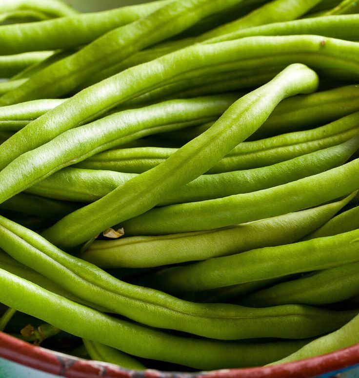 How to Grow Bush Beans (West Coast Seeds)